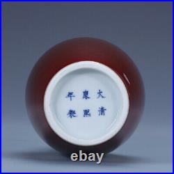8 Antique Old Chinese porcelain qing dynasty kangxi mark red glaze dragon vase