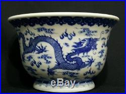 Blue and white flower pots images flower decoration ideas blue and white flower pots image collections flower decoration ideas antique 19th century chinese dragon blue mightylinksfo