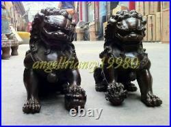 Collectables Fengshui Bronze Door Guardian Lion Foo Fu Dog Pair Statue Big 20cm