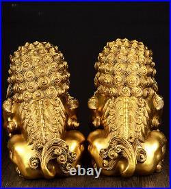 Large Pair Bronze Chinese Lion Foo Dog Statue Figure Sculpture Gold-Color H20CM
