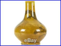 Qing Dynasty 18th Century Amber-Glaze Dragon Phoenix Bottle Vase